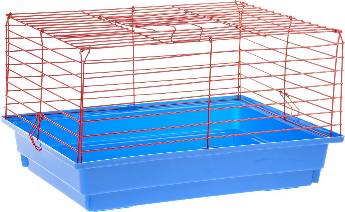 Клетка для кролика ЗооМарк, цвет: синий поддон, красная решетка, 50 х 35 х 30 см0120710Классическая клетка ЗооМарк со сплошным дном станет уединенным личным пространством и уютным домиком для кролика. Изделие выполнено из металла и пластика. Клетка надежно закрывается на защелки. Легко чистится. Для более удобной транспортировки клетку можно сложить.
