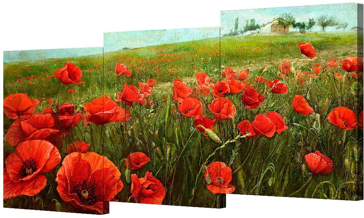 Картина модульная Toplight Цветы, 150 х 70 см. TL-M2039TL-M2039Модульная картина Toplight Цветы выполнена из синтетического полотна, подрамник из МДФ. Картина состоит из трех частей и выглядит очень аккуратно и эстетично благодаря такому способу оформления как галерейная натяжка. Подрамник исключает провисание полотна. Современные технологии, уникальное оборудование и цифровая печать, используемые в производстве, делают постер устойчивым к выцветанию и обеспечивают исключительное качество произведений. Благодаря наличию необходимых креплений в комплекте установка не займет много времени. Модульная картина - это прекрасная возможность создать яркий акцент при оформлении любого помещения. Изделие обязательно привлечет внимание и подарит немало приятных впечатлений своим обладателям. Правила ухода: можно протирать сухой, мягкой тканью. Рекомендованное расстояние между сегментами: 2 см. Толщина подрамника: 3 см.