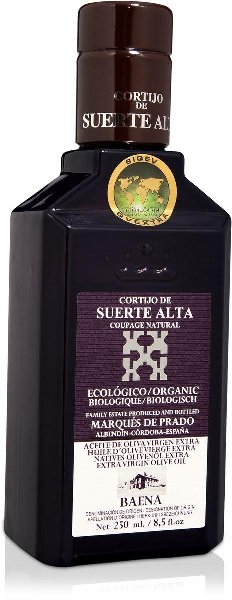 Suerte Alta Купаж оливковое масло Extra Virgin, 250 мл0120710Суэртэ Альта Купаж - нерафинированное оливковое масло первого холодного отжима премиум класса кислотностью 0,2%, которая является лечебной по испанским законам. ЭКОЛОГИЧЕСКИЙ ФЕРМЕРСКИЙ ПРОДУКТ из нескольких сортов оливок раннего сбора урожая. Диетический продукт! ОРГАНИЧЕСКОЕ оливковое масло от семьи Мануэля Эредия Альскон, маркиза Прадо. Компания основана его дедом в 1924 году. С 1996 года компания официально занимается Органическим сельским хозяйством, о чем свидетельствует сертификат C.A.A.E.- Совета по органическому земледелию Андалусии, а также аналогичные сертификаты США, Японии и Европейского совета. Поместье находится недалеко от городка Баэна (провинция Кордоба) - официальной столицы оливкового масла Испании. Именно здесь ежегодно проходит праздник молодого оливкового масла.