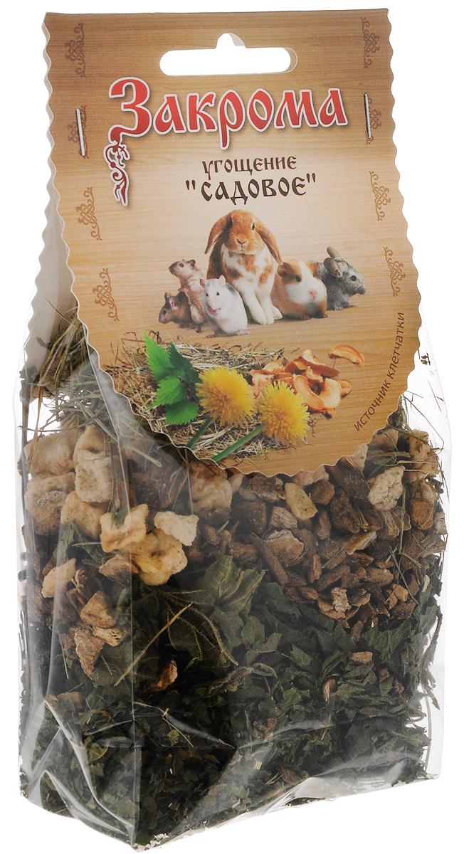 Лакомство для грызунов Закрома Садовое, 50 г0120710Лакомство Закрома Садовое идеально подходит для грызунов. Лакомство является низкокалорийным и излюбленным дополнением к основному рациону шиншилл, кроликов, морских свинок, крыс, хомяков, дегу и мышек. Щадящая сушка компонентов сохраняет максимальное количество белков, витаминов, микро и макроэлементов. Высокое содержание клетчатки способствует отличному пищеварению.Порадуйте своего любимца качественным и полезным лакомством.Товар сертифицирован.