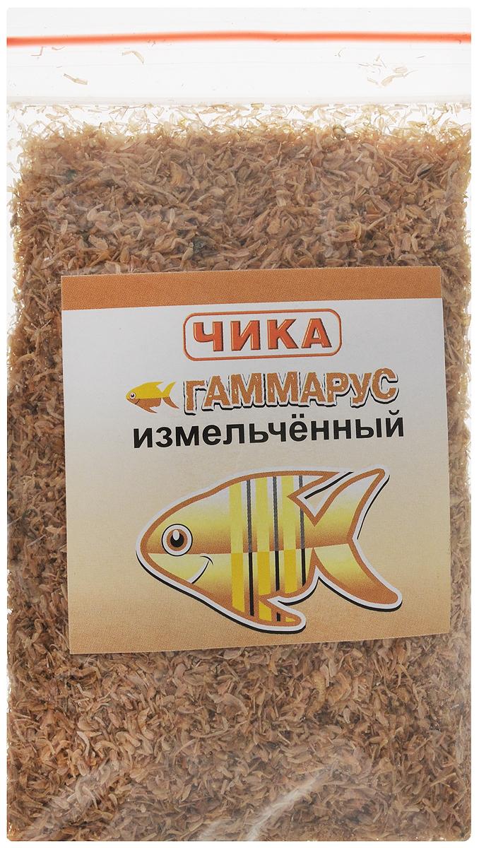 Корм для рыб Чика Гаммарус, измельченный, 85 мл. 46070450602640120710Корм для рыб Чика Гаммарус изготовлен методом сублимированной сушки пресноводных рачков. Корм быстро поглощает воду и приобретает свойства, близкие к естественным. Это полноценный питательный ежедневный корм для средних и крупных рыб. Каротиноиды и другие натуральные пигменты, содержащиеся в гаммарусе, помогают рыбам светиться всеми цветами радуги, способствуют укреплению их здоровья. Нормой считается количество корма, которое рыбы съедают за 2-3 минуты. Остатки корма нужно удалить.Товар сертифицирован.
