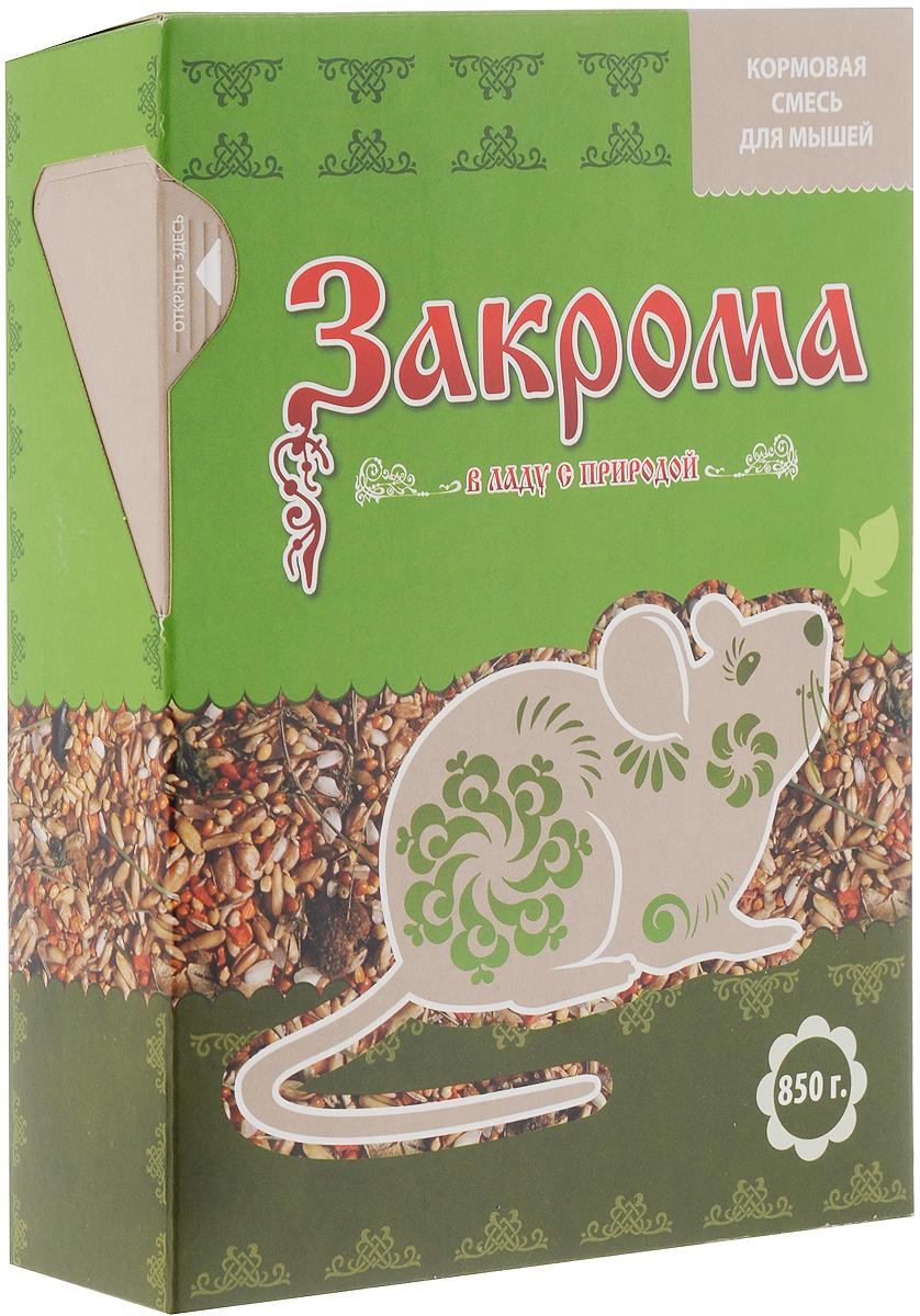 Корм для мышей Закрома, 850 г58536Корм Закрома - это сбалансированное сочетание растительных компонентов. Корм обеспечит необходимое количество питательных веществ, минералов и натуральных витаминов для ежедневного кормления вашей мышки. В корм добавлен сушеный гаммарус, который является дополнительным источником белка (более 76,5%), кальция и железа. А для повышения питательной ценности добавлены мясные кусочки, содержащие большое количество аминокислот, минеральных веществ и витаминов.Употребляя корм Закрома, ваш питомец будет здоровым и активным.Товар сертифицирован.