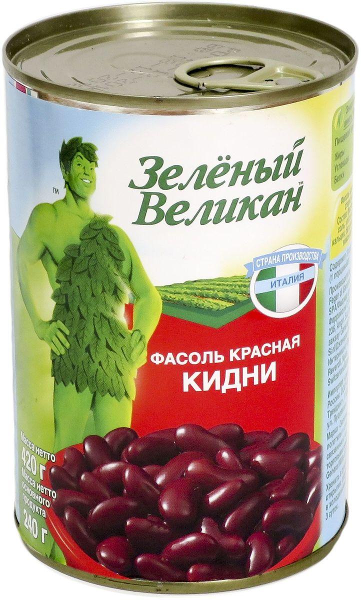 Зеленый великан фасоль кидни, 420 г0120710Природный источник растительного белка - бобы и фасоль Зеленый Великан незаменимы для приготовления блюд как русской, так и другой национальной кухни.