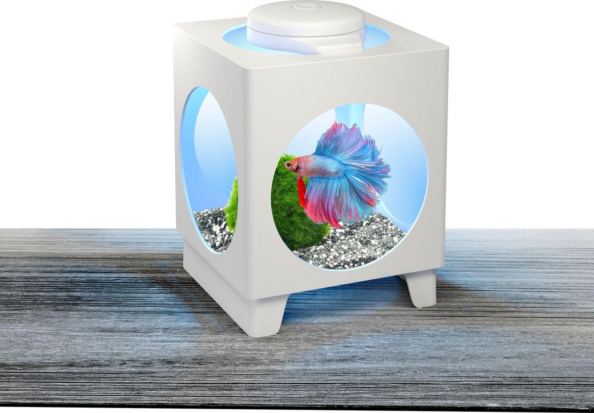 Аквариум-проектор Tetra Betta Projector, 1,8 л258938Аквариум Tetra Betta Projector оснащен адаптером LED освещения, которое можно размещать на разных стенках аквариума, чтобы отражать проекцию прекрасных подводных пейзажей. Изделие выполнено из высококачественного пластика. В комплект входят 3 батарейки Varta типа AAA и инструкция по эксплуатации.Изменяющиеся цвета освещения RGB LEDs: красный, синий, зеленый.Объем аквариума: 1,8 л.