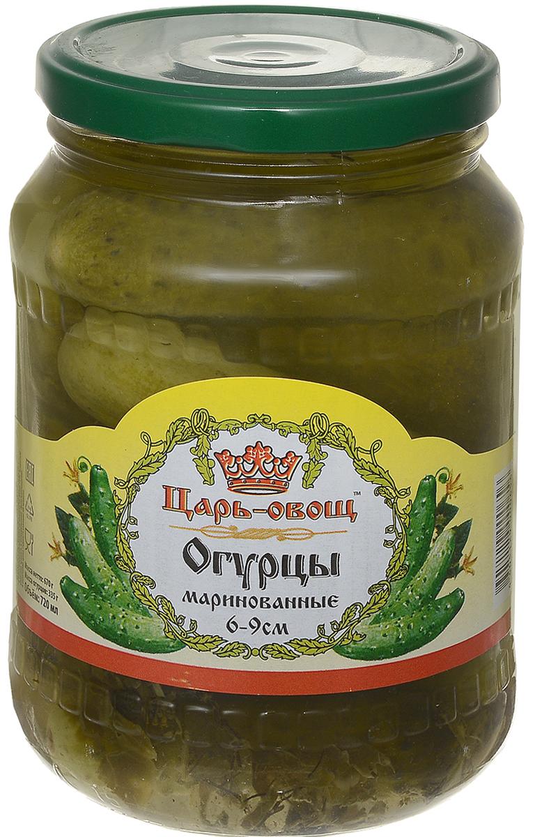 Царь-овощ Огурцы 6-9 см, 680 г