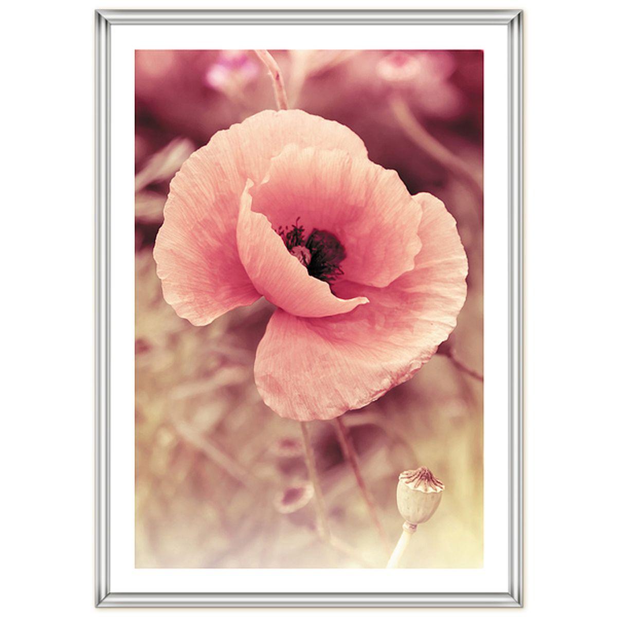 Фоторамка Pioneer Poster Silver, 40 x 60 см38195Рамка для фото формата 40х60 см.Материал: пластик.Материалы, использованные в изготовлении рамок, обеспечивают высокое качество хранения Ваших фотографий, поэтому фотографии не желтеют со временем.