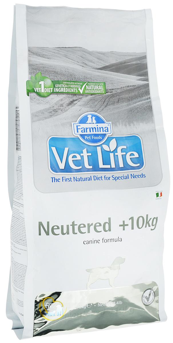 Корм сухой Farmina Vet Life для взрослых кастрированных или стерилизованных собак весом более 10 кг, диетический, 2 кг0120710Корм сухой Farmina Vet Life - полноценное и сбалансированное питание для взрослых кастрированных или стерилизованных собак весом более 10 кг для контроля веса и профилактики развития мочекаменной болезни.Рацион с низким содержанием жира и высоким содержанием белка обеспечивает поддержание оптимальной массы тела. L-карнитин стимулирует окисление жиров и преобразование их в энергию. Низкое содержание углеводов снижает вероятность развития диабета. Сульфат кальция способствует контролю pH мочи и снижает риск развития мочекаменной болезни.Рекомендации по кормлению: использовать по назначению ветеринарного врача.Товар сертифицирован.