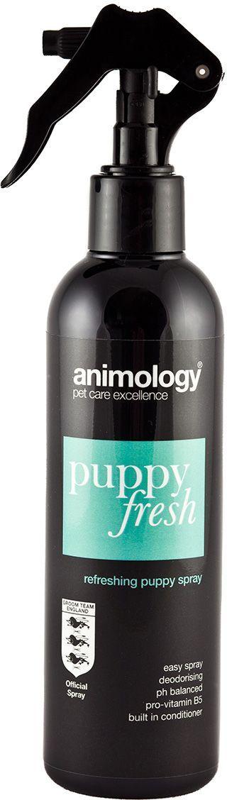 Шампунь-спрей с кондиционером Animology Puppy Fresh Refreshing от неприятных запахов, дезодорирующий, для щенков, 250 мл6198Animology Puppy Fresh (Паппи Фрэш) - освежающий шампунь-спрей с кондиционером с тонким ароматом, обогащён витаминами, устраняет неприятные запахи, уничтожает бактерии, вызывающие аллергию у людей и животных, поддерживает шерсть щенка свежей, чистой и здоровой.Розничная упаковка: Флакон-спрей 250 млИнструкция по применениюРаспылите на сухую шерсть животного равномерно с расстояния около 20 см., вычешите щёткой из шерсти остатки шампуня и оставьте, не смывая водой. При необходимости повторите процедуру ещё раз.