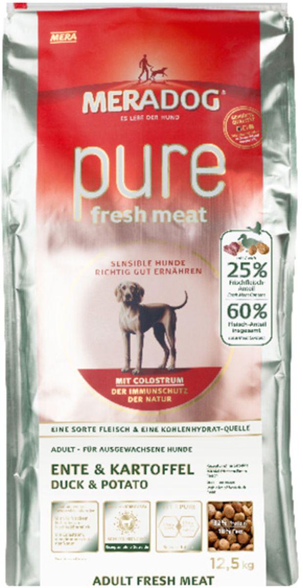 Корм сухой Meradog Рure Fresh Meat Ente & Kartoffel, для собак, со свежей уткой и картофелем, 300 г0120710Полнорационный беззерновой корм для собак и концепция защиты от MERADOG: антиоксиданты (витамин С, Е, бета-каротин и селен) для оптимальной защиты клеток. Натуральные жирные кислоты Омега-3 и Омега-6 (масло лосося, подсолнечное масло, масло льняных семян), а также хелат цинка для кожи и шерсти. Пребиотический инулин для стабильной кишечной флоры и надежного пищеварения. Идеальный корм при многих видах пищевых аллергий: только один источник углеводов и только один вид мяса. Молозиво, маннанолигосахариды и бета-глюканы для оптимальной иммунной защиты.