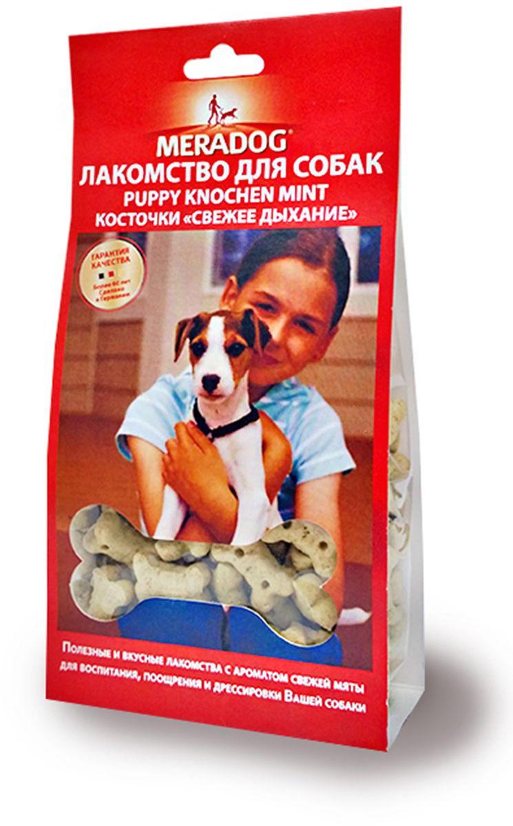 Лакомство для собак Meradog Mint Puppy Knochen. Свежее дыхание, косточки, 150 г0120710Лакомства Meradog - это восхитительное хрустящее печенье, которое не оставит равнодушным ни одну собаку. Лакомства Meradog всегда помогут сделать вашего питомца счастливым, а особый вкус и аромат обязательно доставят ему море удовольствия, и он попросит еще. Лакомства идеально подойдут в качестве угощения и для дрессировки. Воспитание и дрессировка с вкусняшками Meradog приведут вас к цели быстрее, чем вы думаете.Лакомства для собак Meradog - это:- Полезные добавки к основному питанию.- Витамины и минералы, способствующие восстановлению баланса питательных веществ и укреплению здоровья собаки.- Отличная профилактика образования зубного камня и заболеваний полости рта.Побалуйте свою собаку - подарите ей заботу с Meradog.Состав: злаки, овощные субпродукты, масла и жиры (мятное масло 0,04%), минералы, мясо и мясные субпродукты.Товар сертифицирован.
