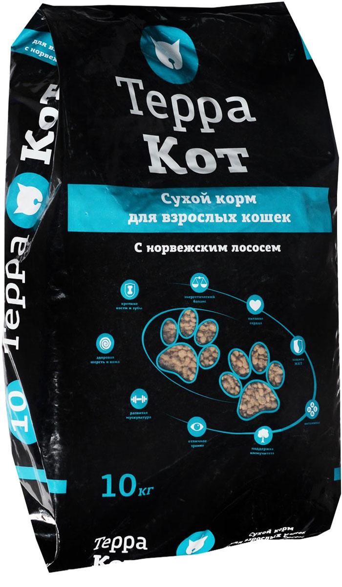 Корм сухой Терра Кот, для взрослых кошек, с норвежским лососем, 10 кг0120710Сухой корм Терра Кот - это полноценное сбалансированное питание для взрослых кошек, разработанное с использованием современных технологий. В состав корма входят все необходимые питательные вещества, включая витамины. Корм легко усваивается и имеет прекрасный вкус. Основные питательные вещества гарантируют сильные кости, превосходные мускулы, здоровую кожу и шерсть.Порадуйте своего любимца вкусным и полезным продуктом. Товар сертифицирован.