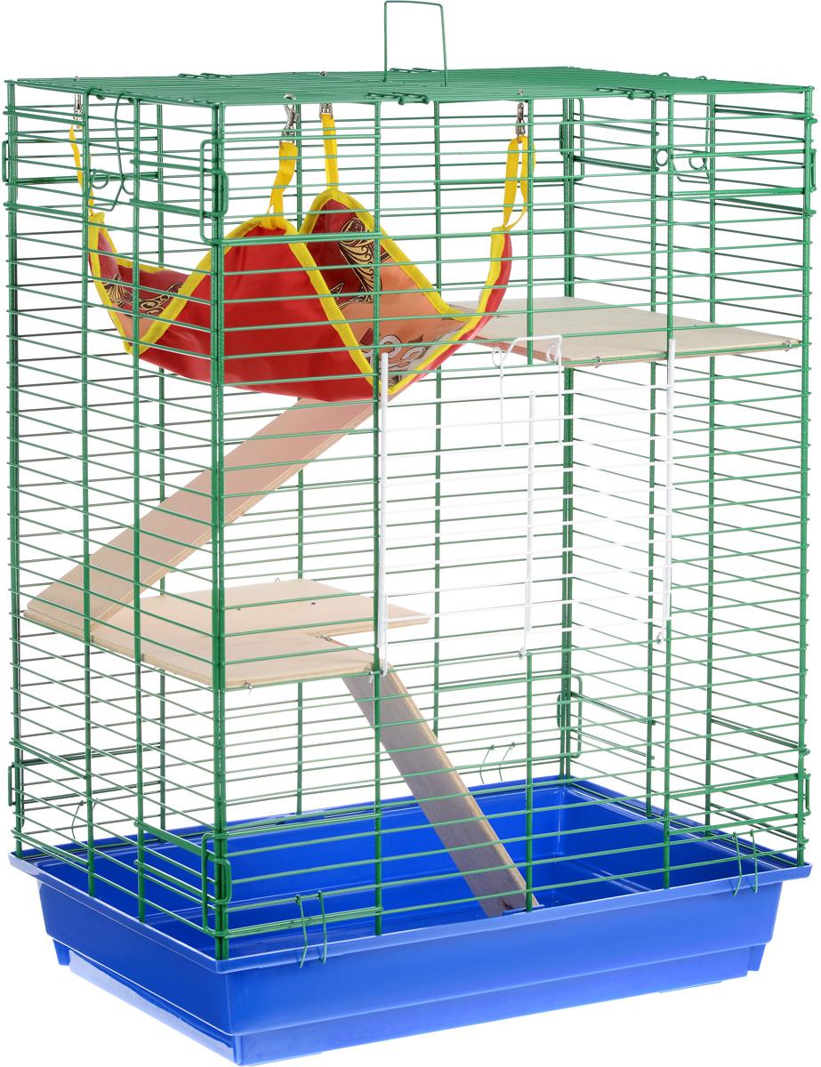 Клетка для шиншилл и хорьков ЗооМарк, цвет: синий поддон, зеленая решетка, 59 х 41 х 79 см. 725дк0120710Клетка ЗооМарк, выполненная из полипропилена и металла, подходит для шиншилл и хорьков. Большая клетка оборудована длинными лестницами и гамаком. Изделие имеет яркий поддон, удобно в использовании и легко чистится. Сверху имеется ручка для переноски. Такая клетка станет уединенным личным пространством и уютным домиком для грызуна.