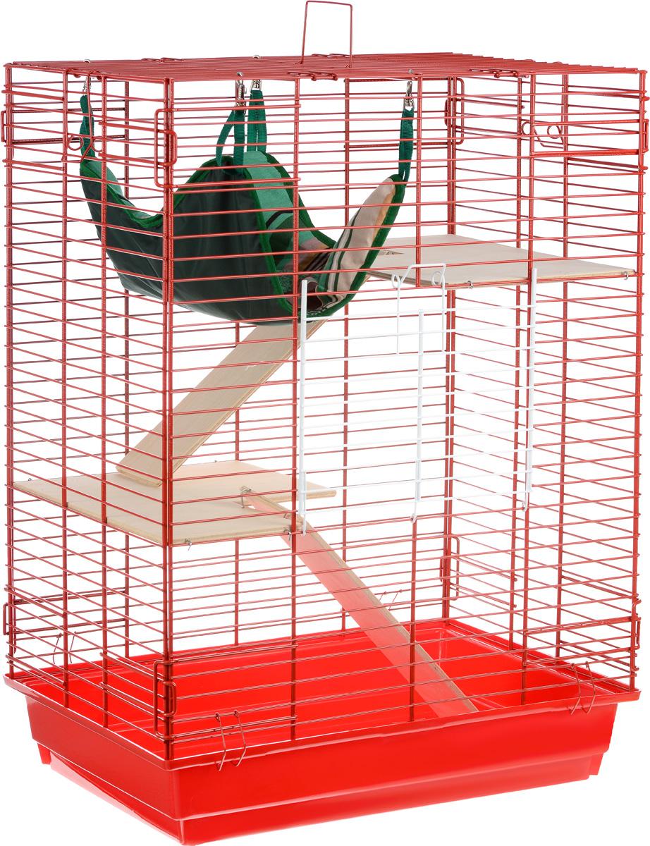 Клетка для шиншилл и хорьков ЗооМарк, цвет: красный поддон, красная решетка, 59 х 41 х 79 см. 725дк0120710Клетка ЗооМарк, выполненная из полипропилена и металла, подходит для шиншилл и хорьков. Большая клетка оборудована длинными лестницами и гамаком. Изделие имеет яркий поддон, удобно в использовании и легко чистится. Сверху имеется ручка для переноски. Такая клетка станет уединенным личным пространством и уютным домиком для грызуна.