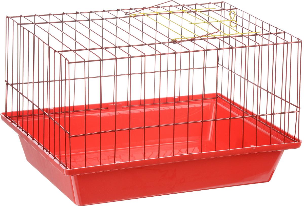 Клетка для морской свинки ЗооМарк, цвет: красный поддон, красная решетка, 41 х 30 х 25 см0120710Клетка ЗооМарк, выполненная из полипропилена и металла, подходит для морских свинок и других грызунов. Клетка имеет яркий поддон, удобна в использовании и легко чистится. Сверху имеется ручка для переноски. Такая клетка станет личным пространством и уютным домиком для вашего питомца.
