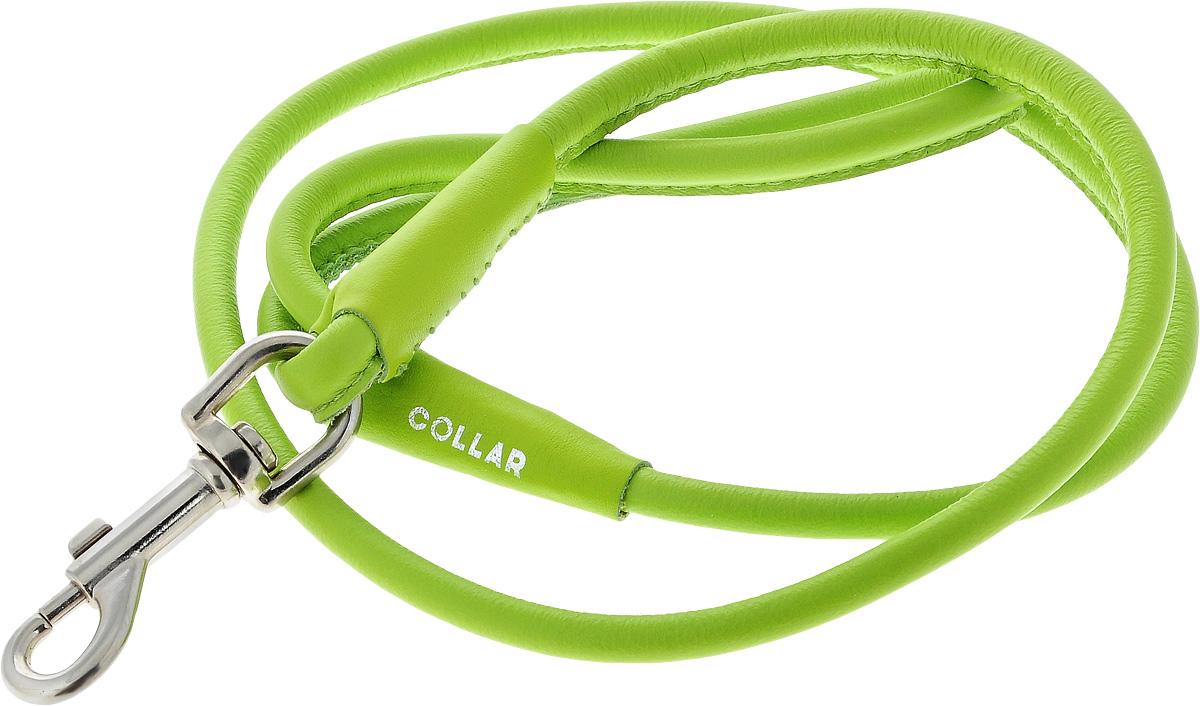 Поводок для собак CoLLaR Glamour, цвет: салатовый, диаметр 1 см, длина 1,22 м2102aПоводок для собак CoLLaR Glamour изготовлен из натуральной кожи и снабжен металлическим карабином. Поводок отличается не только исключительной надежностью и удобством, но и ярким дизайном. Он идеально подойдет для активных собак, для прогулок на природе и охоты. Поводок - необходимый аксессуар для собаки. Ведь в опасных ситуациях именно он способен спасти жизнь вашему любимому питомцу.Длина поводка: 1,22 м.Диаметр поводка: 1 см.