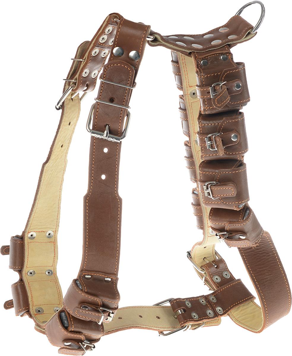 Шлея для собак CoLLaR, с утяжелителями, цвет: коричневый, бежевый, ширина 4,5 см, обхват груди 92-100 смDM-160132-2Шлея CoLLaR, выполненная из натуральной кожи, оснащена утяжелителями и может использоваться при выгуле или дрессировке бойцовых и служебных собак крупных пород при нехватке нагрузки и недостаточной мышечной массе. Нагрузку можно регулировать путем изъятия грузиков из расстегивающихся карманов.Крепкие металлические элементы делают ее надежной и долговечной. Размер регулируется при помощи пряжки. Шлея для собак CoLLaR отличается высоким качеством, удобством и универсальностью.Обхват груди: 92-100 см.Обхват шеи: 76-91 см.Ширина шлеи: 4,5 см.Количество грузиков: 12.Вес грузика: 450 г.
