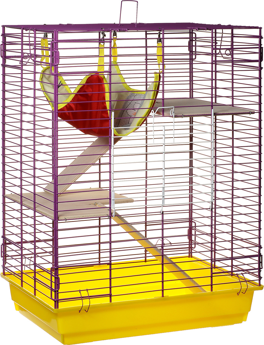 Клетка для шиншилл и хорьков ЗооМарк, цвет: желтый поддон, фиолетовая решетка, 59 х 41 х 79 см. 725дк0120710Клетка ЗооМарк, выполненная из полипропилена и металла, подходит для шиншилл и хорьков. Большая клетка оборудована длинными лестницами и гамаком. Изделие имеет яркий поддон, удобно в использовании и легко чистится. Сверху имеется ручка для переноски. Такая клетка станет уединенным личным пространством и уютным домиком для грызуна.