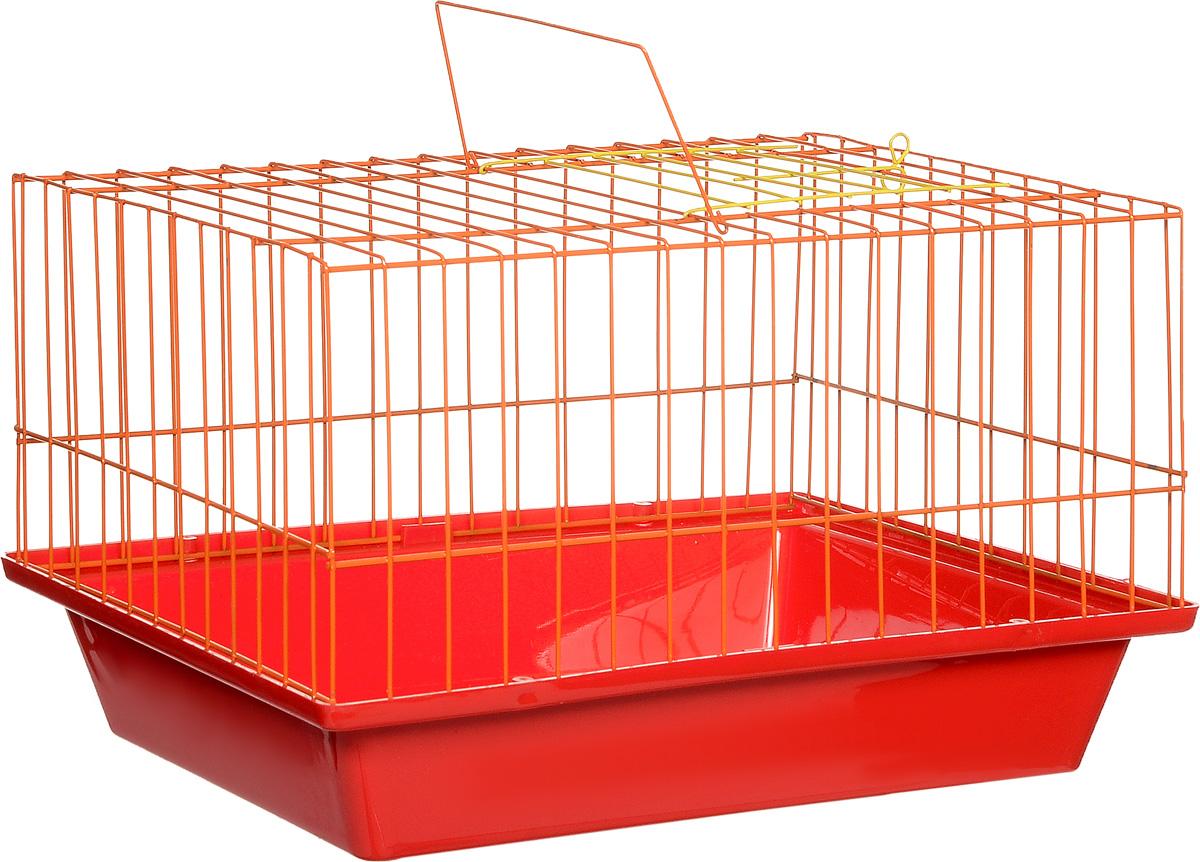 Клетка для морской свинки ЗооМарк, цвет: красный поддон, оранжевая решетка, 41 х 30 х 25 см0120710Клетка ЗооМарк, выполненная из полипропилена и металла, подходит для морских свинок и других грызунов. Клетка имеет яркий поддон, удобна в использовании и легко чистится. Сверху имеется ручка для переноски. Такая клетка станет личным пространством и уютным домиком для вашего питомца.