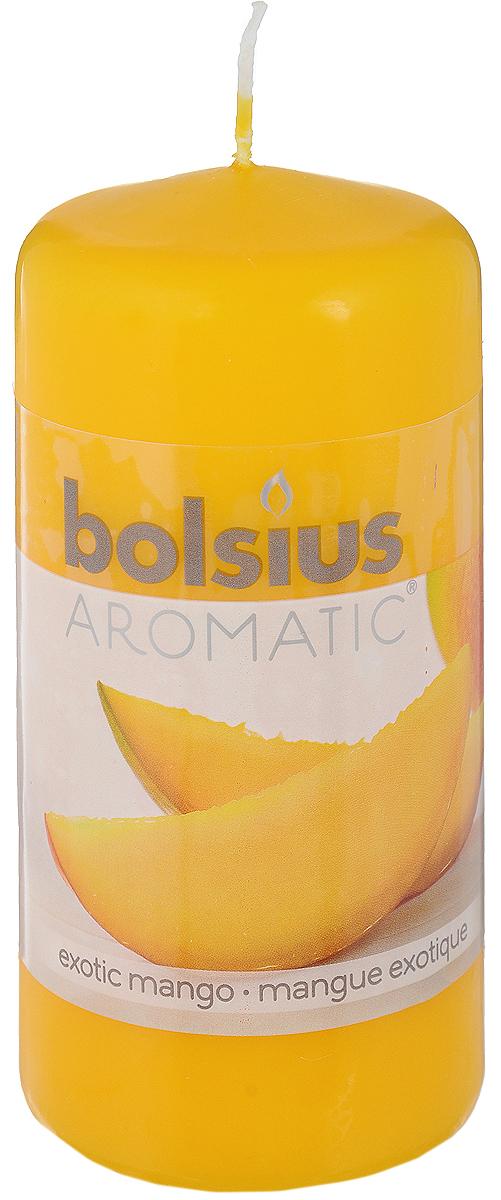Свеча ароматическая Bolsius Манго, 6 х 6 х 11,5 смN10431_серебристыйСвеча ароматическая Bolsius Манго создаст в доме атмосферу тепла и уюта. Свеча приятно смотрится в интерьере, она безопасна и удобна в использовании. Свеча создаст приятное мерцание, а сладкий манящий аромат окутает вас и подарит приятные ощущения.