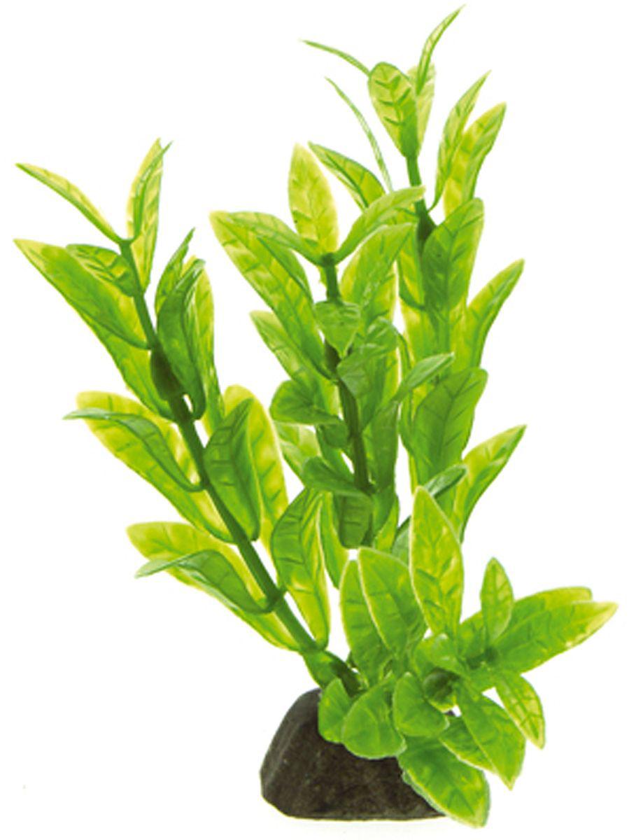 Искусственное растение для аквариума Dezzie, 10 см. 5602000GRAVEL 015/3,5Подводное искусственное растение для аквариума Dezzie является неотъемлемой частью композиции аквариума, радует глаз, а также может быть уютным убежищем для рыб и других обитателей аквариума. Пластиковое растение имеет устойчивое дно, которое не нуждается в дополнительном утяжелении и легко устанавливается в грунт. Растение очень практично в использовании, имеет стойкую к воздействию воды окраску и не требует обременительного ухода. Его можно легко достать и протереть тряпкой во время уборки аквариума. Растения из пластика создадут неповторимый дизайн пресноводного или морского аквариума.Высота растения: 10 см.