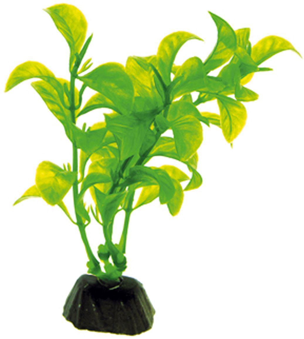 Искусственное растение для аквариума Dezzie, 10 см. 56020135602013Подводное искусственное растение для аквариума Dezzie является неотъемлемой частью композиции аквариума, радует глаз, а также может быть уютным убежищем для рыб и других обитателей аквариума. Пластиковое растение имеет устойчивое дно, которое не нуждается в дополнительном утяжелении и легко устанавливается в грунт. Растение очень практично в использовании, имеет стойкую к воздействию воды окраску и не требует обременительного ухода. Его можно легко достать и протереть тряпкой во время уборки аквариума. Растения из пластика создадут неповторимый дизайн пресноводного или морского аквариума.Высота растения: 10 см.