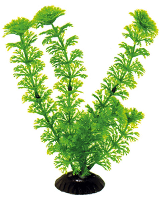 Искусственное растение для аквариума Dezzie, 20 см. 56020325602032Подводное искусственное растение для аквариума Dezzie является неотъемлемой частью композиции аквариума, радует глаз, а также может быть уютным убежищем для рыб и других обитателей аквариума. Пластиковое растение имеет устойчивое дно, которое не нуждается в дополнительном утяжелении и легко устанавливается в грунт. Растение очень практично в использовании, имеет стойкую к воздействию воды окраску и не требует обременительного ухода. Его можно легко достать и протереть тряпкой во время уборки аквариума. Растения из пластика создадут неповторимый дизайн пресноводного или морского аквариума.Высота растения: 20 см.