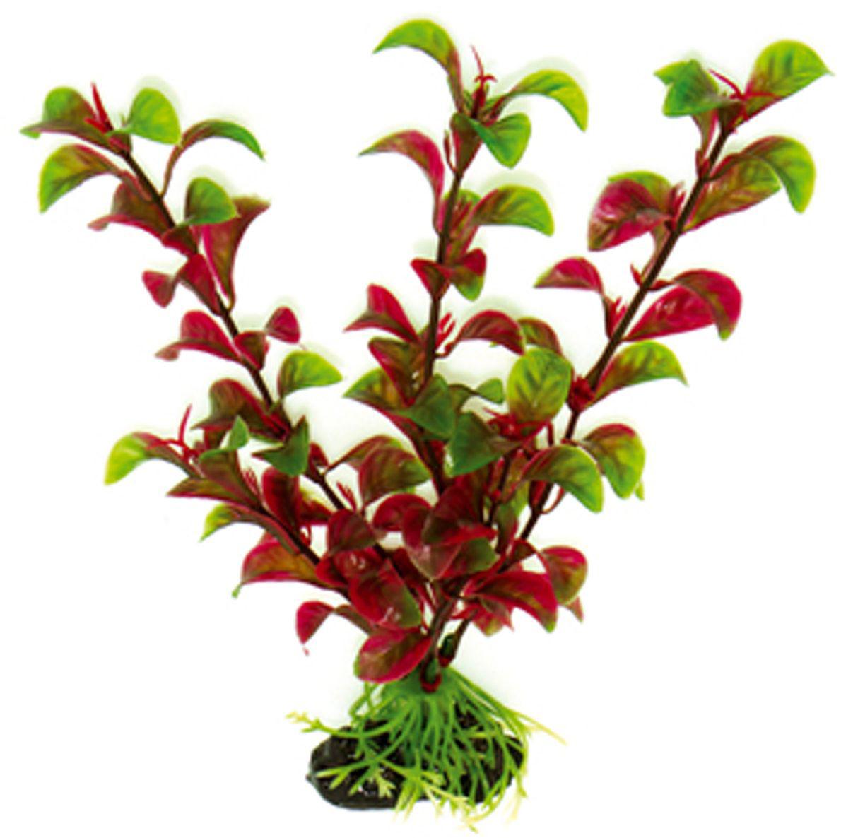 Искусственное растение для аквариума Dezzie, 20 см. 5602038GRAVEL 027/3,5Подводное искусственное растение для аквариума Dezzie является неотъемлемой частью композиции аквариума, радует глаз, а также может быть уютным убежищем для рыб и других обитателей аквариума. Пластиковое растение имеет устойчивое дно, которое не нуждается в дополнительном утяжелении и легко устанавливается в грунт. Растение очень практично в использовании, имеет стойкую к воздействию воды окраску и не требует обременительного ухода. Его можно легко достать и протереть тряпкой во время уборки аквариума. Растения из пластика создадут неповторимый дизайн пресноводного или морского аквариума.Высота растения: 20 см.