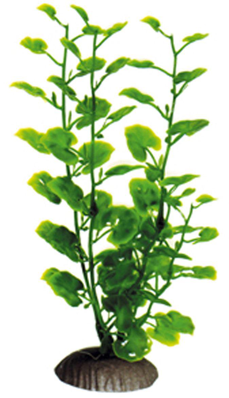 Искусственное растение для аквариума Dezzie, 20 см. 5602040Accessory 091Подводное искусственное растение для аквариума Dezzie является неотъемлемой частью композиции аквариума, радует глаз, а также может быть уютным убежищем для рыб и других обитателей аквариума. Пластиковое растение имеет устойчивое дно, которое не нуждается в дополнительном утяжелении и легко устанавливается в грунт. Растение очень практично в использовании, имеет стойкую к воздействию воды окраску и не требует обременительного ухода. Его можно легко достать и протереть тряпкой во время уборки аквариума. Растения из пластика создадут неповторимый дизайн пресноводного или морского аквариума.Высота растения: 20 см.