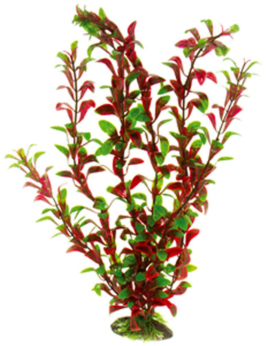 Искусственное растение для аквариума Dezzie, 40 см. 560208112171996Подводное искусственное растение для аквариума Dezzie является неотъемлемой частью композиции аквариума, радует глаз, а также может быть уютным убежищем для рыб и других обитателей аквариума. Пластиковое растение имеет устойчивое дно, которое не нуждается в дополнительном утяжелении и легко устанавливается в грунт. Растение очень практично в использовании, имеет стойкую к воздействию воды окраску и не требует обременительного ухода. Его можно легко достать и протереть тряпкой во время уборки аквариума. Растения из пластика создадут неповторимый дизайн пресноводного или морского аквариума.Высота растения: 40 см.
