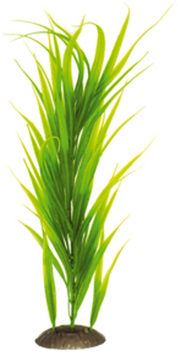 Искусственное растение для аквариума Dezzie, 40 см. 5602095GRAVEL 040/3,5Подводное искусственное растение для аквариума Dezzie является неотъемлемой частью композиции аквариума, радует глаз, а также может быть уютным убежищем для рыб и других обитателей аквариума. Пластиковое растение имеет устойчивое дно, которое не нуждается в дополнительном утяжелении и легко устанавливается в грунт. Растение очень практично в использовании, имеет стойкую к воздействию воды окраску и не требует обременительного ухода. Его можно легко достать и протереть тряпкой во время уборки аквариума. Растения из пластика создадут неповторимый дизайн пресноводного или морского аквариума.Высота растения: 40 см.