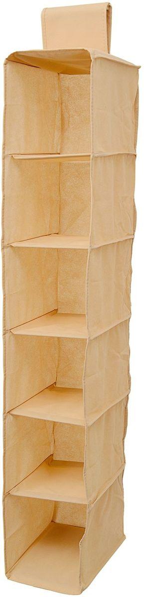 Органайзер Homsu Bora-Bora, подвесной в шкаф, 120х22х31 см, цвет: бежевый1004900000360Органайзер Homsu Bora-Bora выполнен из высококачественного материала. Подвесной органайзер имеет 6 раздельных ячеек, очень удобен для хранения вещей в вашем шкафу. Идеально для колготок, шапок, шарфов, мелочей и других вещей ежедневного пользования.