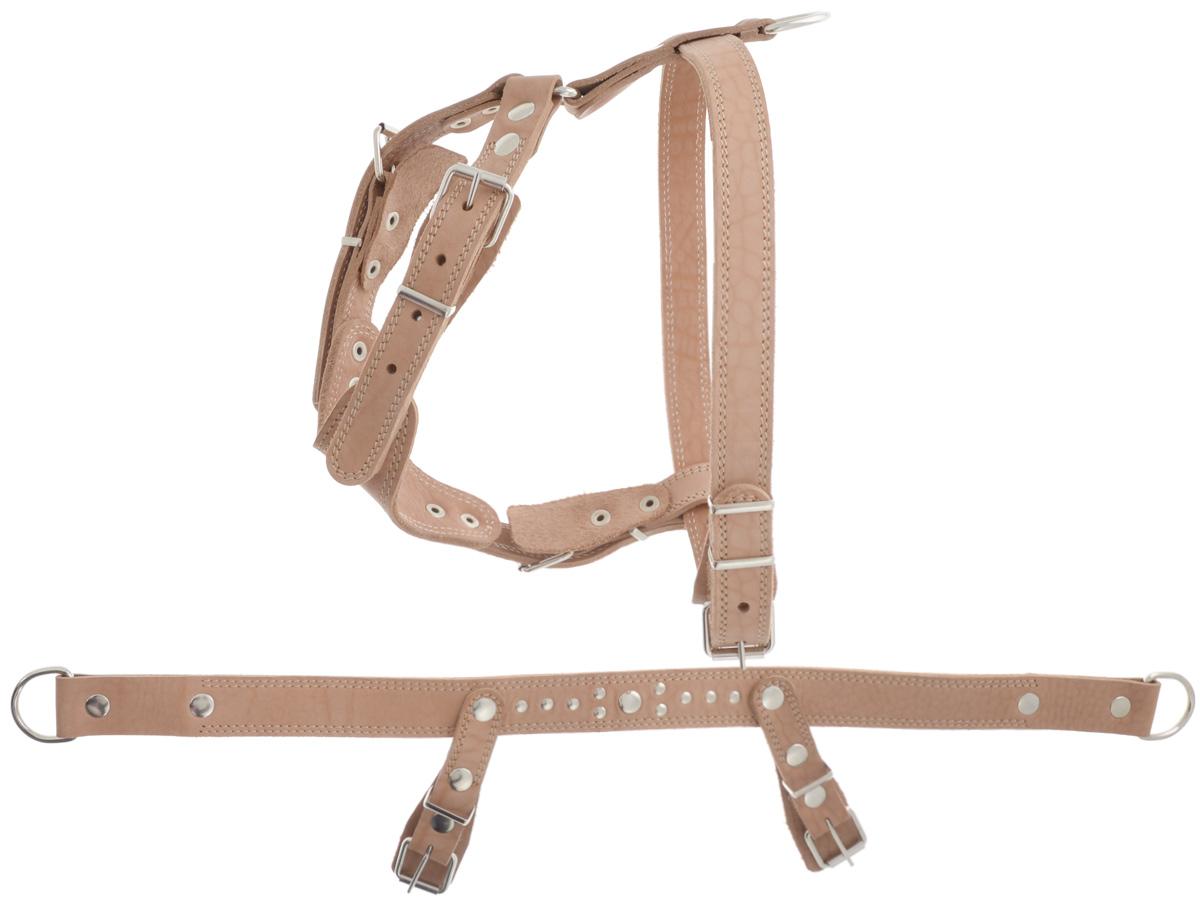 Шлейка для собак Аркон Стандарт №1, универсальная, цвет: бежевый, обхват груди 70-87 смш1уУниверсальная шлейка Аркон Стандарт №1 выполнена из искусственной кожи. Данная модель может использоваться как для прогулки, так и для на ездового спорта. Она состоит 3 частей: к основной части крепятся элементы для прогулочной и ездовой шлейки. Крепкие металлические крепежи делают ее надежной и долговечной. Имеется металлическое полукольцо для крепления поводка, а также тяговые полукольца для санок.Шлейка отличается высоким качеством, удобством и универсальностью.Размер регулируется при помощи пряжки, зафиксированной в одном из отверстий. Правильно подобранная шлейка не стесняет движения собаки, не натирает кожу, поэтому животное чувствует себя в ней уверенно и комфортно. Обхват груди: 70-87 см.Ширина строп: 3,5 см; 2,5 см.