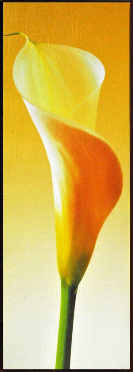 Декобокс СолоДомДекор Калла на желтом 1, 25 х 70 см4606400204268Декобокс СолоДомДекор Калла на желтом 1 выполнен из бумаги, рама - из МДФ. Современные технологии, уникальное оборудование и цифровая печать, используемые в производстве, делают постер устойчивым к выцветанию и обеспечивают исключительное качество произведений. Благодаря наличию необходимых креплений в комплекте установка не займет много времени. Декобокс - это прекрасная возможность создать яркий акцент при оформлении любого помещения. Картина обязательно привлечет внимание и подарит немало приятных впечатлений своим обладателям. Правила ухода: можно протирать сухой, мягкой тканью.
