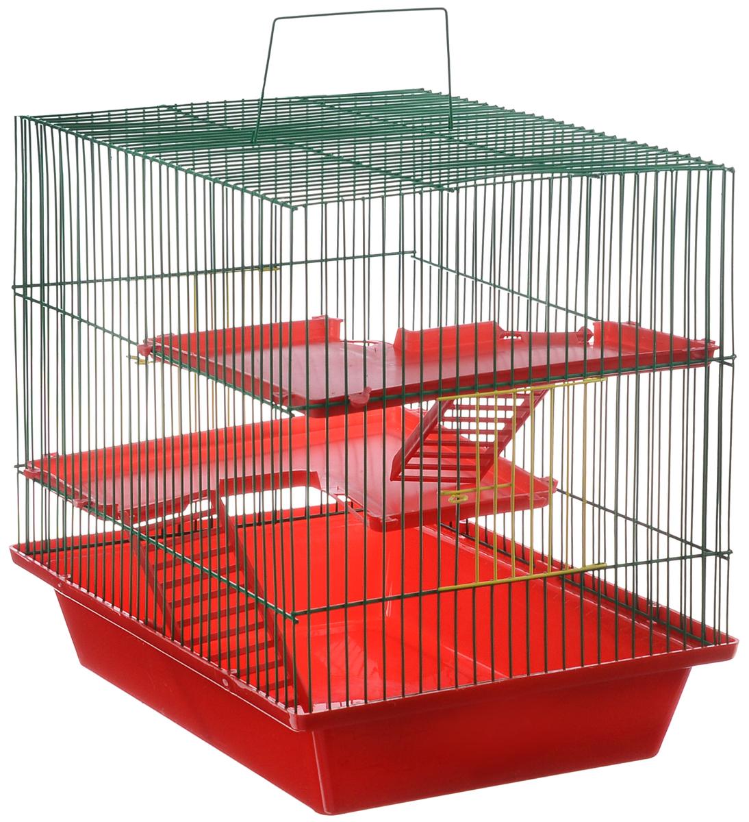 Клетка для грызунов ЗооМарк Гризли, 3-этажная, цвет: красный поддон, зеленая решетка, красные этажи, 41 х 30 х 36 см0120710Клетка ЗооМарк Гризли, выполненная из полипропилена и металла, подходит для мелких грызунов. Изделие трехэтажное. Клетка имеет яркий поддон, удобна в использовании и легко чистится. Сверху имеется ручка для переноски.Такая клетка станет уединенным личным пространством и уютным домиком для маленького грызуна.