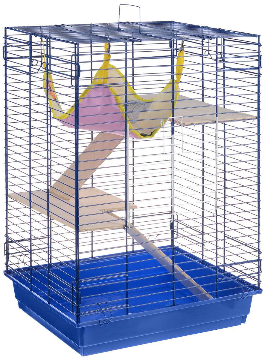 Клетка для шиншилл и хорьков ЗооМарк, цвет: синий поддон, синяя решетка, 59 х 41 х 79 см. 725дк0120710Клетка ЗооМарк, выполненная из полипропилена и металла, подходит для шиншилл и хорьков. Большая клетка оборудована длинными лестницами и гамаком. Изделие имеет яркий поддон, удобно в использовании и легко чистится. Сверху имеется ручка для переноски. Такая клетка станет уединенным личным пространством и уютным домиком для грызуна.