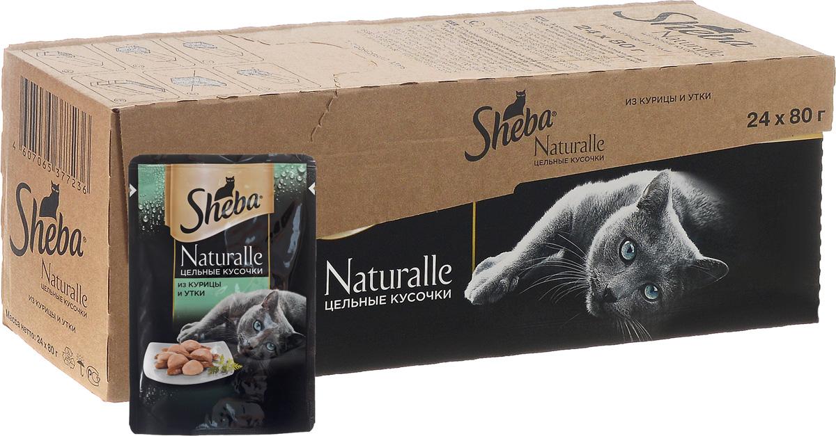 Корм консервированный Sheba Naturalle, для взрослых кошек, с курицей и уткой, 80 г, 24 шт0120710Полнорационный сбалансированный корм для взрослых кошек Sheba Naturalle идеально подойдет вашему любимцу. Аппетитные мясные кусочки в нежном желе содержат все питательные вещества, витамины и минералы, необходимые для сбалансированного питания вашей кошки каждый день. Это изысканное блюдо - яркий пример того, как простые ингредиенты в руках истинного кулинара превращаются в удивительно вкусное блюдо. Сочные, тающие во рту кусочки курицы и утки рождают нежный вкус, который подарит настоящее удовольствие вашей кошке. Товар сертифицирован.