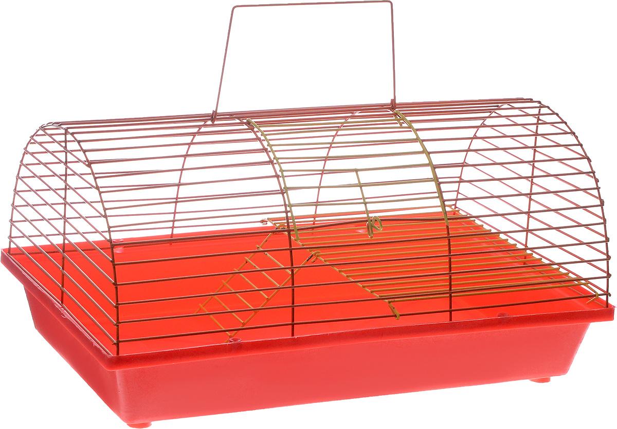 Клетка для грызунов ЗооМарк, цвет: красный поддон, оранжевая решетка, 36 х 23 х 17,5 см240ж_желтый, фиолетовыйКлетка ЗооМарк, выполненная из полипропилена и металла, подходит для грызунов. Она имеет яркий поддон, удобна в использовании и легко чистится. Клетка оснащена вторым ярусом с лесенкой, выполненных из металла.Такая клетка станет уединенным пространством и уютным домиком для маленького грызуна.
