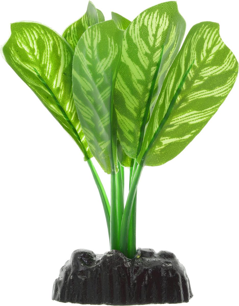 Растение для аквариума Barbus Диффенбахия тигровая, шелковое, высота 10 смPlant 036/10Растение для аквариума Barbus Диффенбахия тигровая, выполненное из качественного шелка, станет прекрасным украшением вашего аквариума. Шелковое растение идеально подходит для дизайна всех видов аквариумов. В воде происходит абсолютная имитация живых растений. Изделие не требует дополнительного ухода и просто в применении. Растение абсолютно безопасно, нейтрально к водному балансу, устойчиво к истиранию краски, подходит как для пресноводного, так и для морского аквариума. Растение для аквариума Barbus поможет вам смоделировать потрясающий пейзаж на дне вашего аквариума или террариума. Высота растения: 10 см.