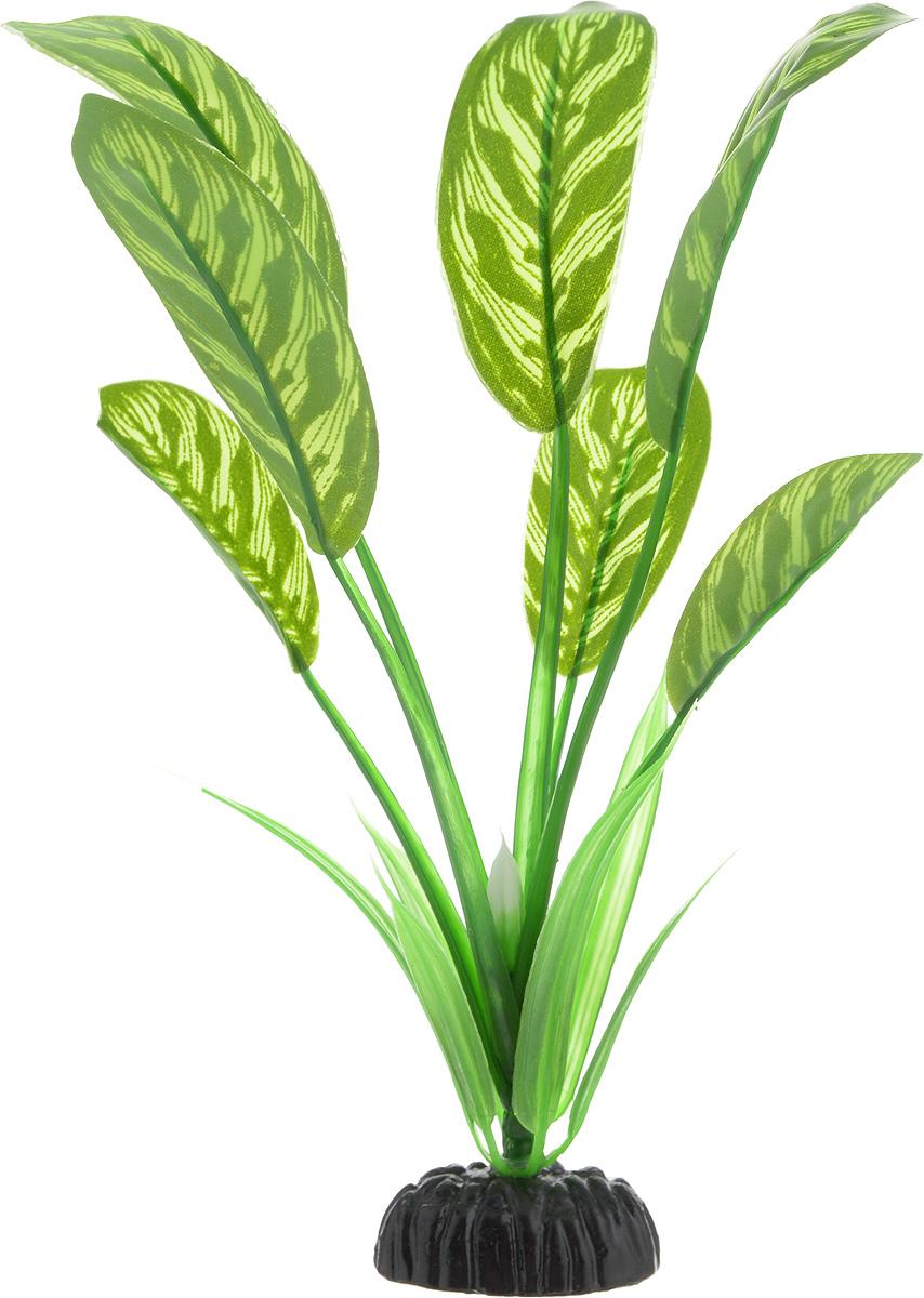 Растение для аквариума Barbus Диффенбахия тигровая, шелковое, высота 20 см0120710Растение для аквариума Barbus Диффенбахия тигровая, выполненное из качественного шелка, станет прекрасным украшением вашего аквариума. Шелковое растение идеально подходит для дизайна всех видов аквариумов. В воде происходит абсолютная имитация живых растений. Изделие не требует дополнительного ухода и просто в применении. Растение абсолютно безопасно, нейтрально к водному балансу, устойчиво к истиранию краски, подходит как для пресноводного, так и для морского аквариума. Растение для аквариума Barbus поможет вам смоделировать потрясающий пейзаж на дне вашего аквариума или террариума. Высота растения: 20 см.
