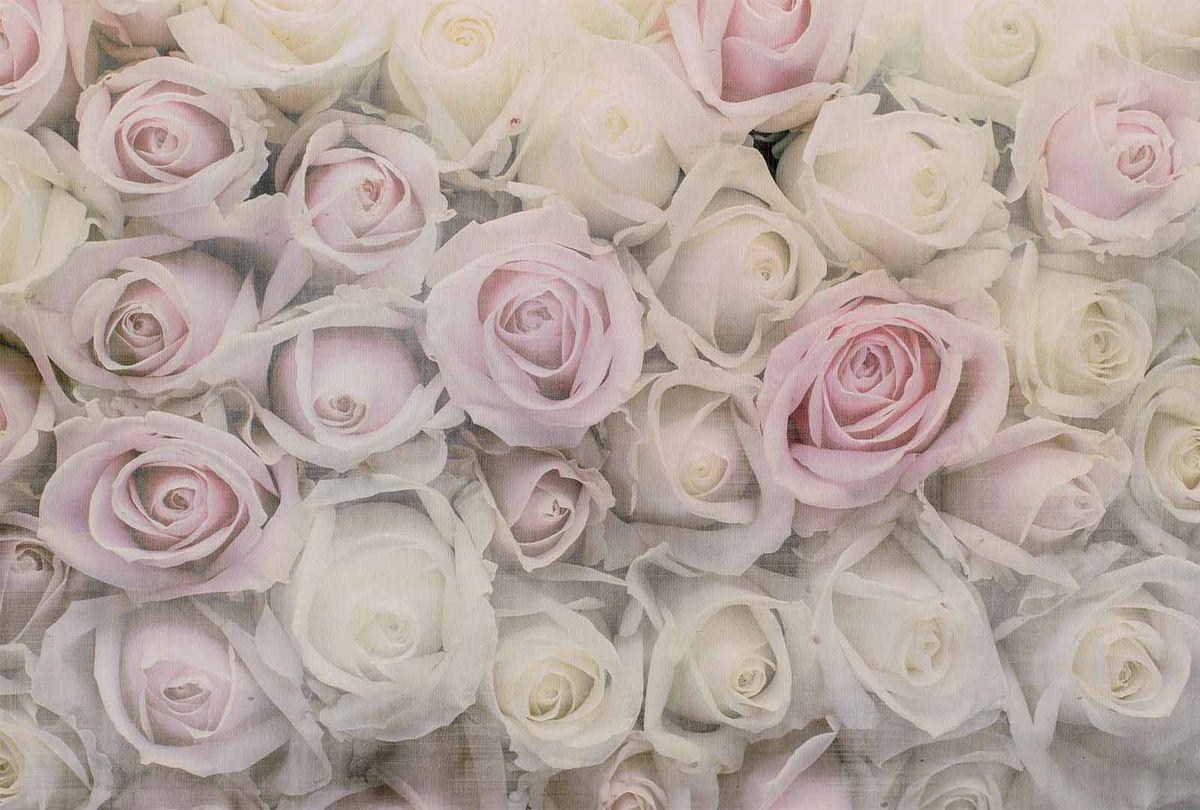 Фотообои Milan Розовая нежность, текстурные, 300 х 200 см. M 718m 718Виниловые обои горячего тиснения на флизелиновой основе MILAN — дизайнерская коллекция фотообоев и фотопанно европейского качества, созданная на основе последних тенденций в мире интерьерной моды. Еще вчера эти тренды демонстрировались на подиумах