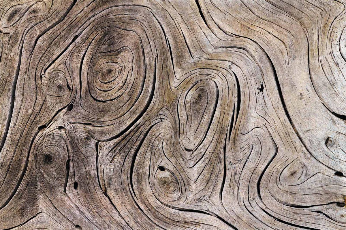 Фотообои Milan Текстура дерева, текстурные, 300 х 200 см. M 722m 722Виниловые обои горячего тиснения на флизелиновой основе MILAN — дизайнерская коллекция фотообоев и фотопанно европейского качества, созданная на основе последних тенденций в мире интерьерной моды. Еще вчера эти тренды демонстрировались на подиумах