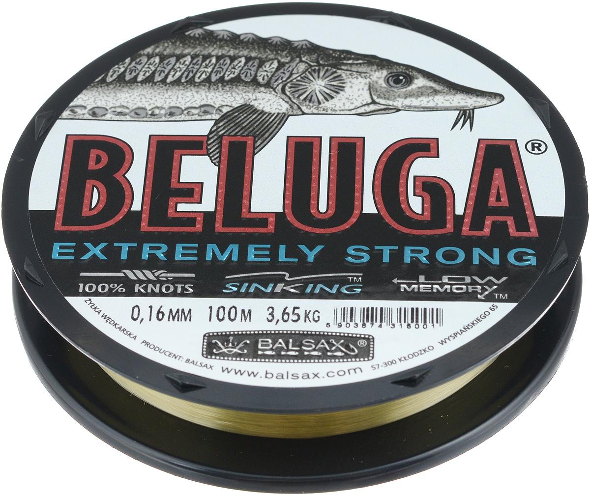 Леска Balsax Beluga, 100 м, 0,16 мм, 3,65 кг1232633Леска Balsax Beluga изготовлена из 100% нейлона и идеально пригодна для ловли сильных хищников. Она имеет уменьшенную растяжимость и поэтому немедленно информирует о всех прикосновениях рыбы. Леска малочувствительна на повреждения и загрязнения. Благодаря своим свойствам делает возможным форсированную буксировку сильной рыбы. Великолепно пригодна для грунтовой ловли.
