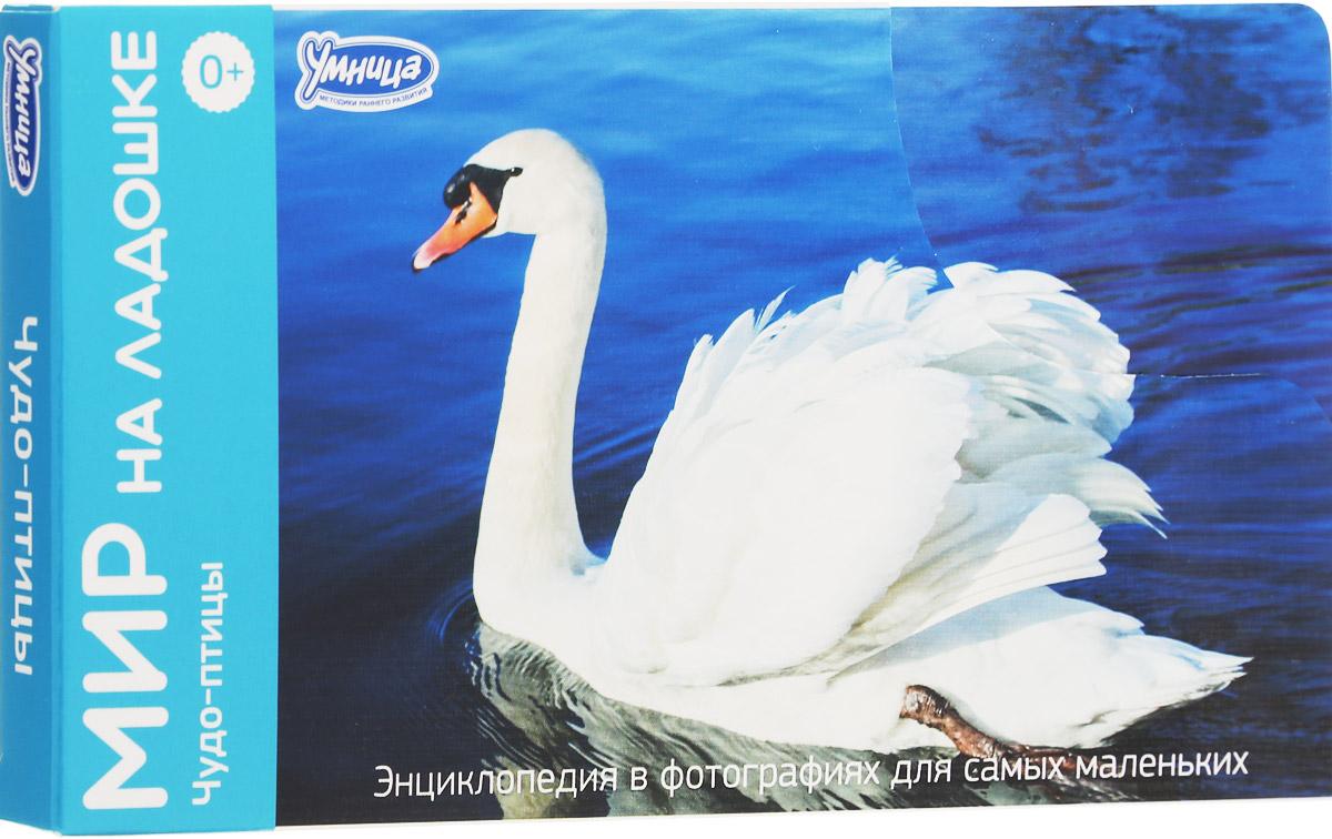 Умница Обучающие карточки Чудо-птицы 2012 умница профессии торговля