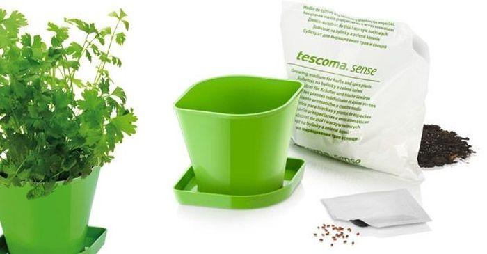Набор для выращивания пряных растений Tescoma Sense. Кориандр. 899073Z-0307Набор для выращивания пряных растений Tescoma Sense. Кориандр включает в себя семена, органический почвенный субстрат био-качества и цветочный горшок из прочного пластика. Инструкция по применению внутри упаковки.