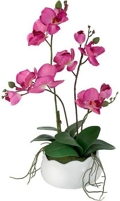 Декоративные цветы в вазе Dream Garden Орхидея бордо, 30х17х42 см899074Торговая марка Dream Garden, Китай. Композиции из искусственных цветов долговечны, не требуют ежедневного ухода, выполнены из натуральных шелка и текстиля, прошедших специальную обработку высококачественными современными материалами. Искусственные цветы максимально приближены к натуральным, не пахнут, что исключает все аллергические реакции.