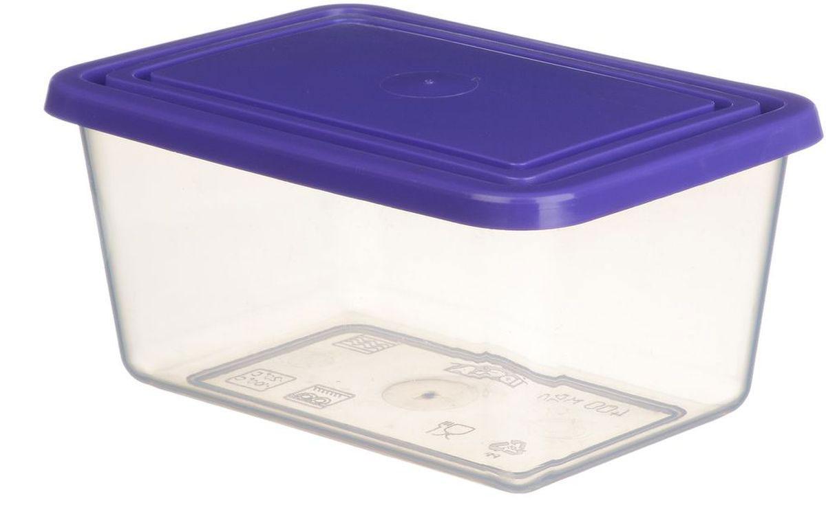 Емкость для продуктов Idea, прямоугольная, цвет: прозрачный, фиолетовый, 4 лМ 1455Прямоугольная емкость для продуктов Idea изготовлена из пищевого полипропилена. Крышка из эластичного материала плотно закрывается, дольше сохраняя продукты свежими. Боковые стенки прозрачные, что позволяет видеть содержимое. Емкость идеально подходит для хранения пищи, фруктов, ягод, овощей. В ней также можно хранить разнообразные сыпучие продукты. Такая емкость пригодится в любом хозяйстве.