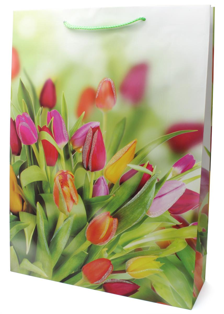 Пакет подарочный МегаМАГ Premium. Тюльпаны, 32,4 х 44,5 х 10,2 см. 504 XL43517Подарочный пакет МегаМАГ, изготовленный из плотной ламинированной бумаги, станет незаменимым дополнением к выбранному подарку. Для удобной переноски на пакете имеются ручки-шнурки.Подарок, преподнесенный в оригинальной упаковке, всегда будет самым эффектным и запоминающимся. Окружите близких людей вниманием и заботой, вручив презент в нарядном, праздничном оформлении.