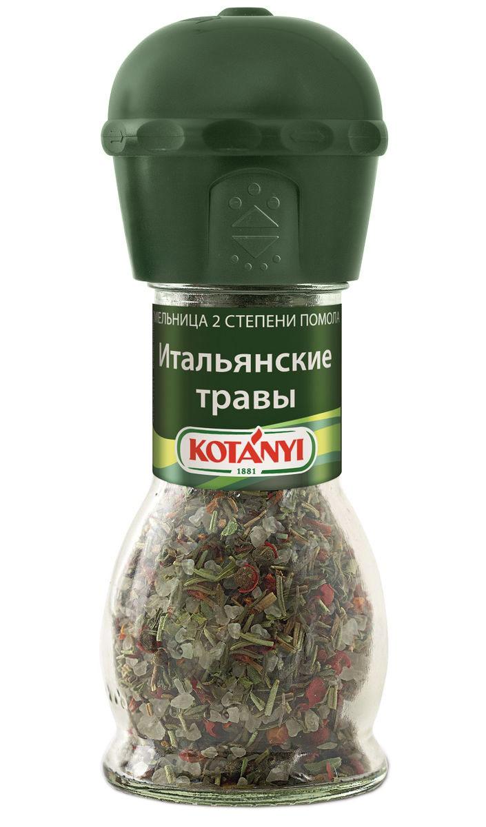 Kotanyi Итальянские травы, 48 г411711Насладитесь интенсивным ароматом трав! Добавляйте приправу в конце приготовления или в готовое блюдо.Внимание! Может содержать следы глютеносодержащих злаков, яиц, сои, сельдерея, кунжута, орехов, молока (лактозы), горчицы. Уважаемые клиенты! Обращаем ваше внимание, что полный перечень состава продукта представлен на дополнительном изображении.