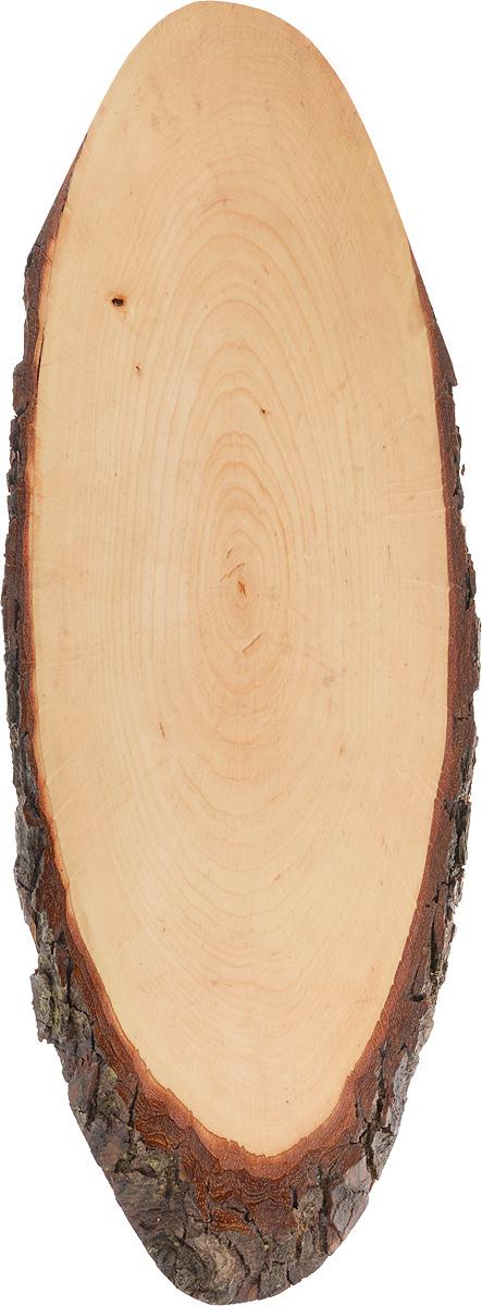 Доска сервировочная Kesper, 48 х 17 х 1,5 см54 009312Доска сервировочная Kesper выполнена из натурального, экологически чистого материала (массива бука) в виде среза дерева. Специальная обработка обеспечивает прочность и долгий срок службы. Изделие имеет нестандартную форму, обладает высокими антибактериальными свойствами, имеет приятный древесный аромат. Доска идеально подойдет для красивой подачи ваших кулинарных шедевров. Ее размер и форма позволяют подавать мясные блюда, нарезки, холодные или горячие закуски, идеальный вариант для суши. Эта доска станет настоящим украшением и изюминкой вашей кухни. Не рекомендуется мыть в посудомоечной машине.