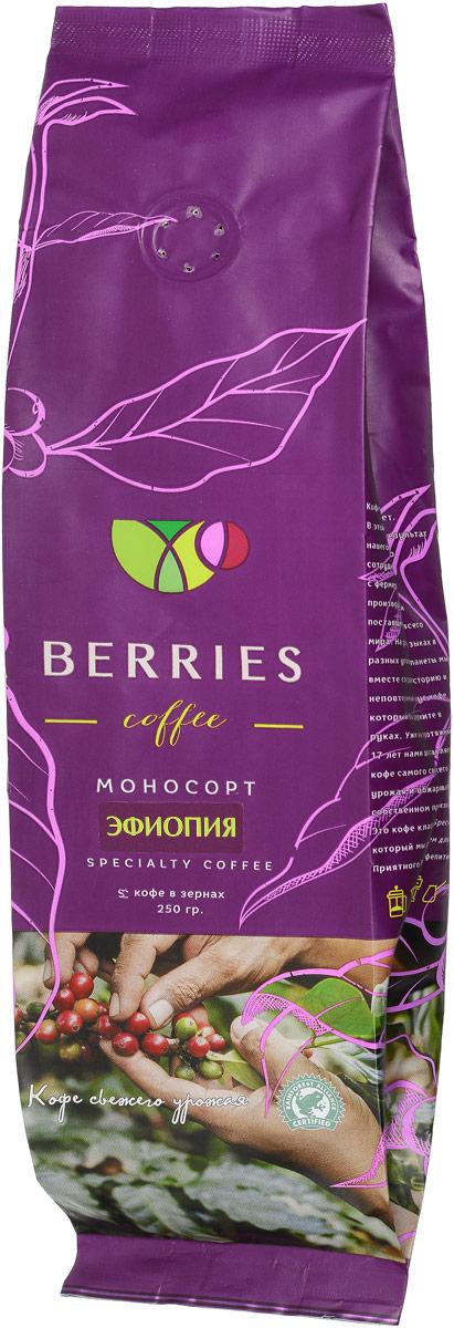 Berries Coffee Эфиопия моносорт кофе в зернах, 250 г0120710У этого кофе цветочный аромат, во вкусе можно уловить оттенки специй. Он сладкий, с плотной шелковистой консистенцией и послевкусием горького шоколада.